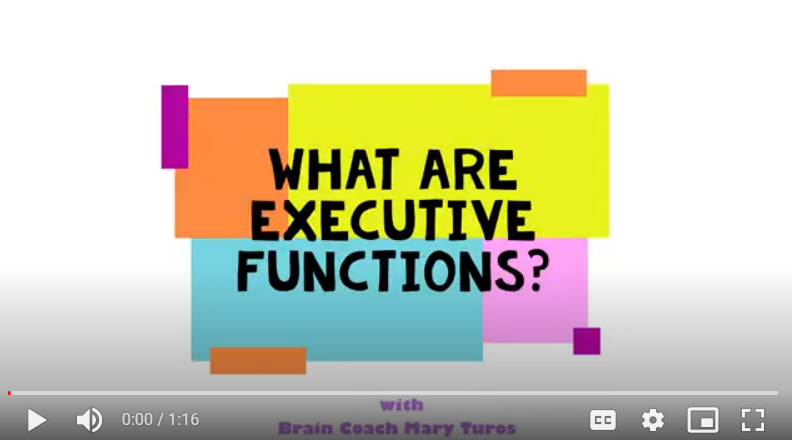 A child who is struggling academically or with behavior may be dealing with executive function issues. Mary shares what parents can look for and common signs that may point to an executive function issue.